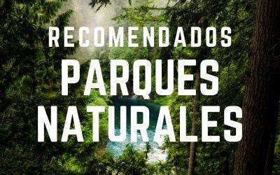 Conoce los mejores parques naturales cerca de Bogotá, ideales para salir de la rutina